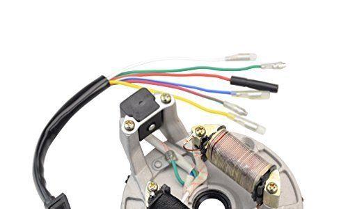 GOOFIT Lichtmaschine Stator Ankerplatte Magneto 2 Spulen für 50-125cc Kickstarter ATV, Dirtbike & Go Kart